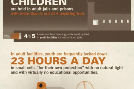 Youth in the Adult Criminal Justice System Infographic