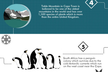 10 amazing facts about South Africa Infographic