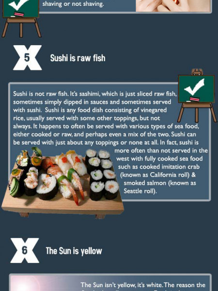 10 Common Misconceptions Dispelled Infographic