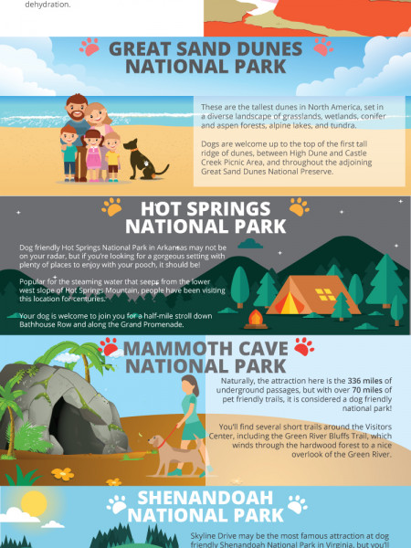 10 Dog Friendly National Parks You Must VisitThis Summer Infographic