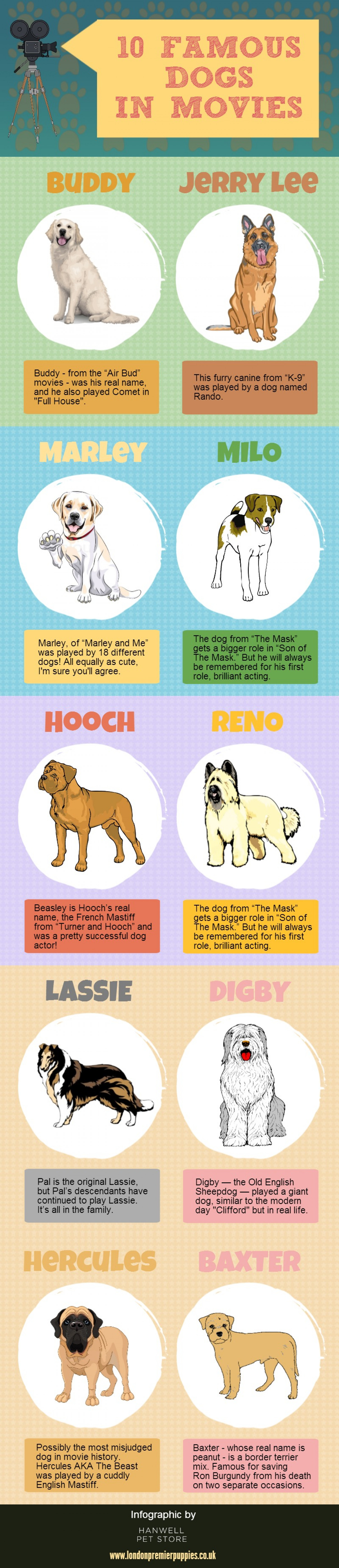 10 Famous Dogs in Movies Infographic