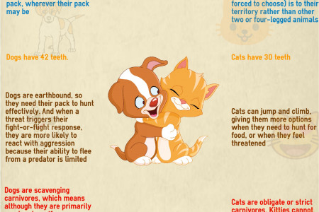 10 Interesting Differences Between Cats and Dogs Infographic