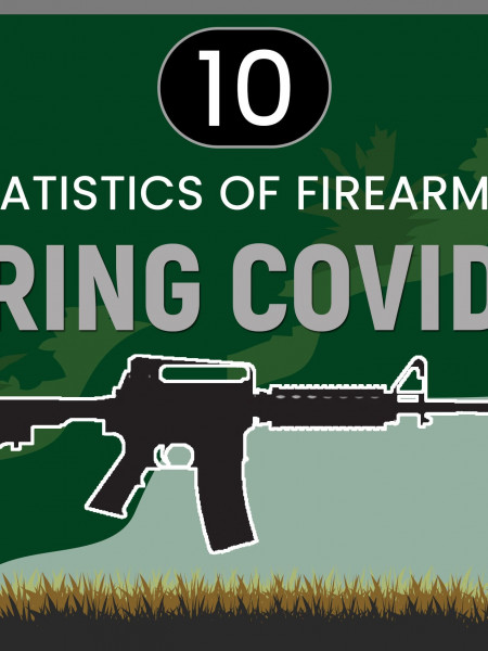 10 Key Statistics of Firearm Sales During Covid-19 Infographic
