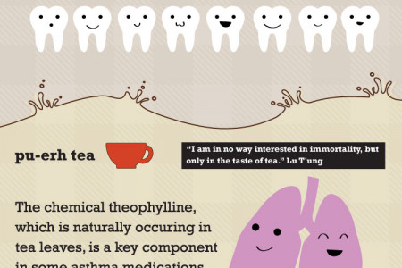 10 Teas to Drink Before You Die Infographic