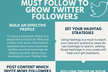 10 things a business must follow to grow Twitter Followers Infographic