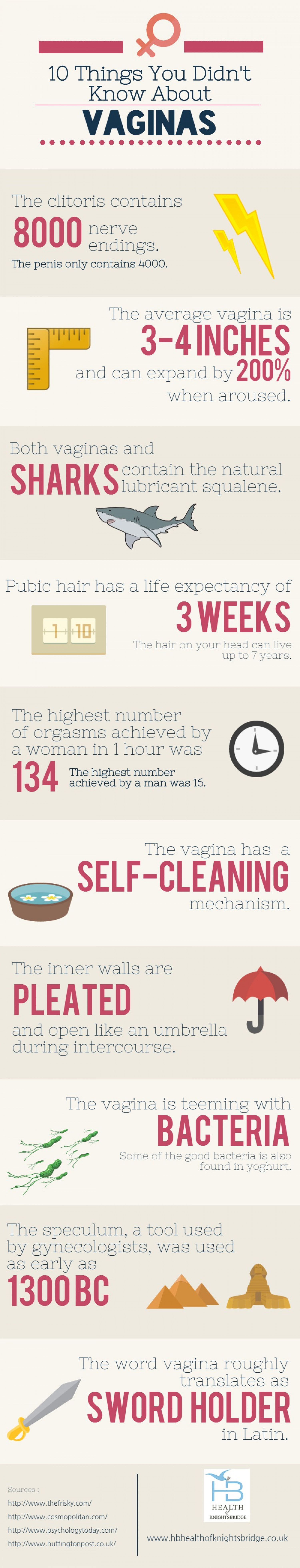 10 Things You Didn't Know About Vaginas Infographic