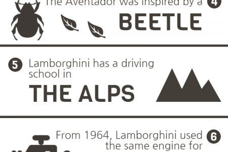 10 Things You Probably Didn't Know About Lamborghini Infographic