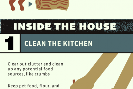 10 Tips for Keeping Pests Away Infographic