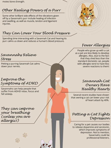 10 Ways Savannah Cats Make Humans Healthier Infographic