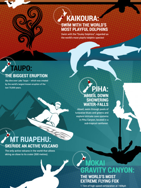 Amazing Activities Only Available In New Zealand Infographic