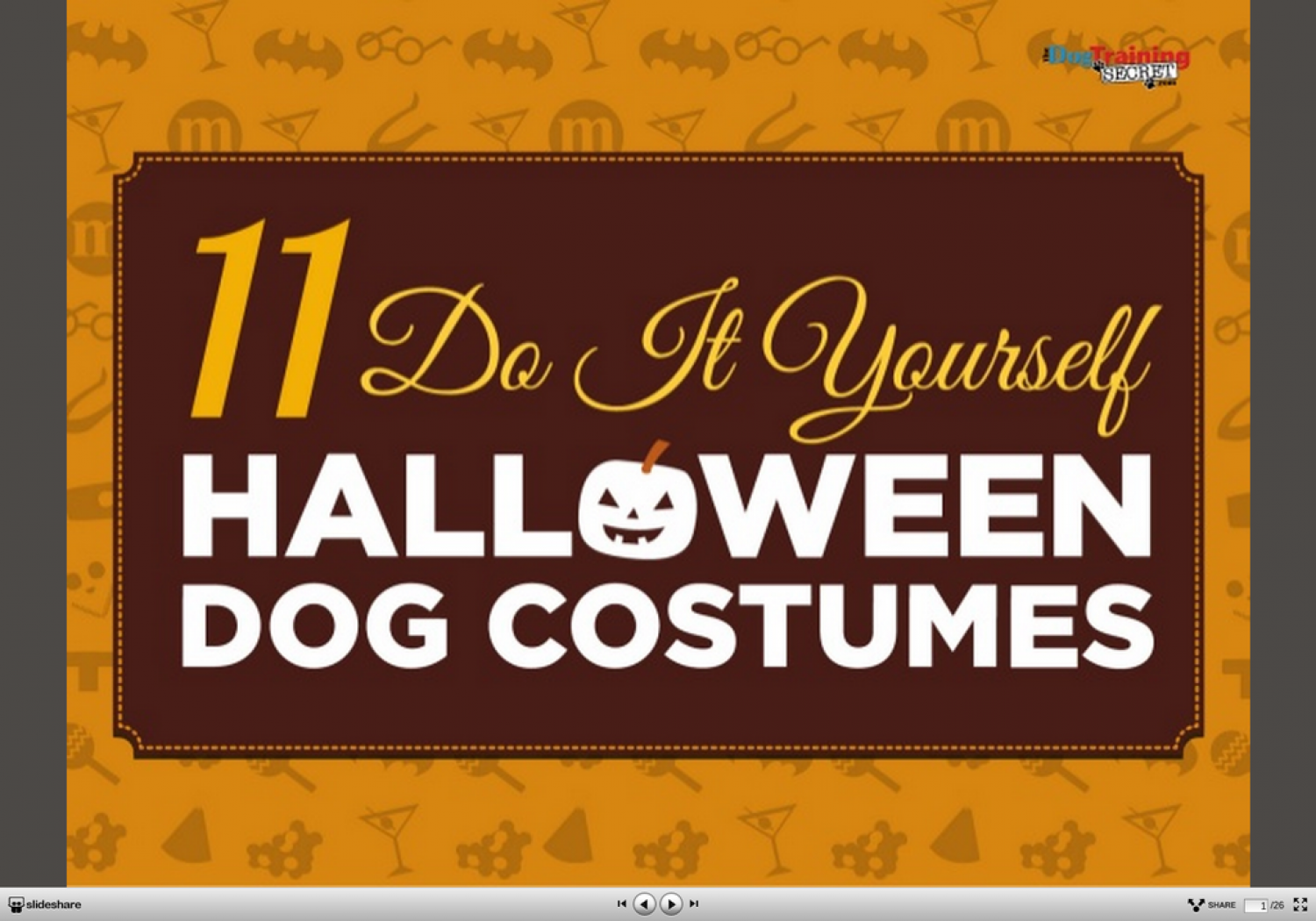 11 creative diy dog costumes you can make in time for halloween 11 creative diy dog costumes you can make in time for halloween infographic solutioingenieria Choice Image