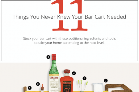 11 Things You Never Knew Your Bar Cart Needed Infographic