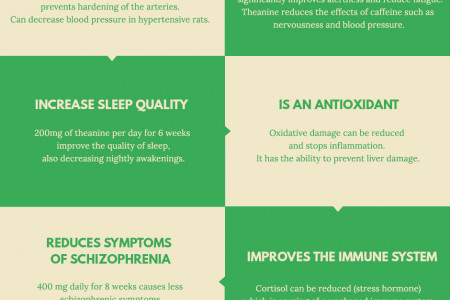 12 BENEFITS OF THEANINE Infographic