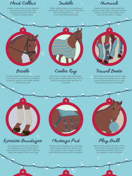 12 Days of Horsey Christmas Infographic