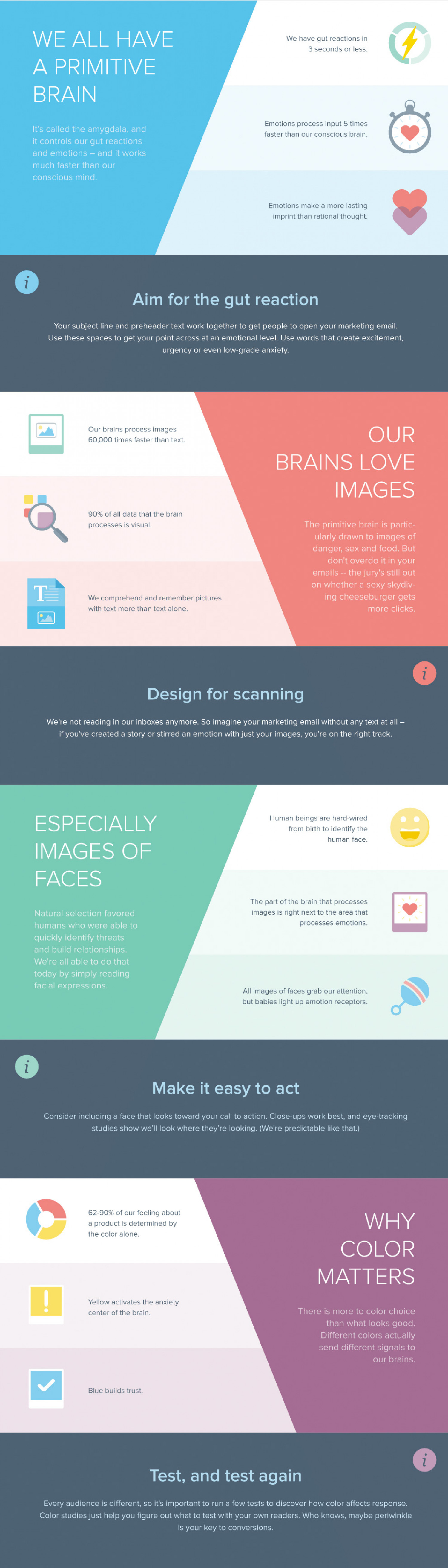 12 Facts About the Human Brain Infographic
