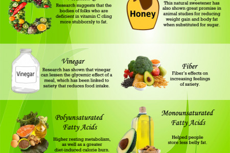12 Fat Releasing Foods to Lose Weight Fast Infographic