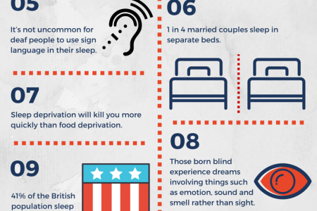 13 Bizarre Facts about Sleep You need to Know Infographic