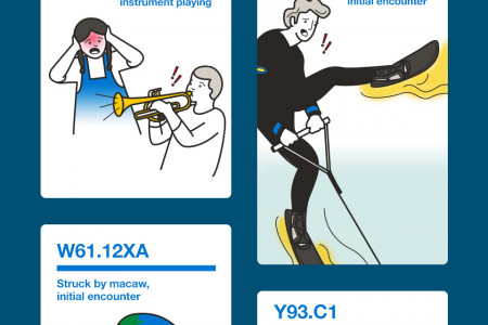 14 Silly ICD-10 Codes Show Crazy Injuries Infographic