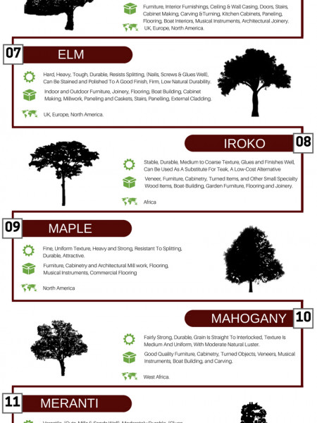 17 Popular Hardwoods Origin, Features & Uses Infographic Infographic