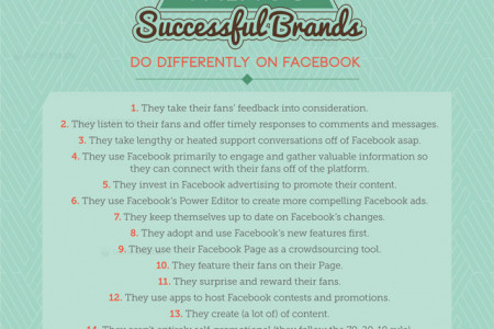 19 Things Successful Brands Do Different on Facebook Infographic