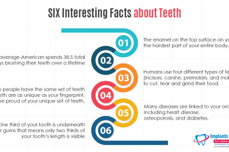2. 6 Interesting Facts about Teeth Infographic