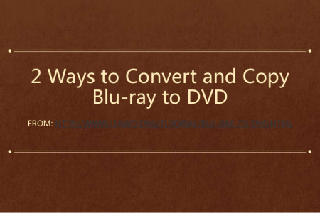 2 Ways to Convert and Copy Blu-ray to DVD Infographic
