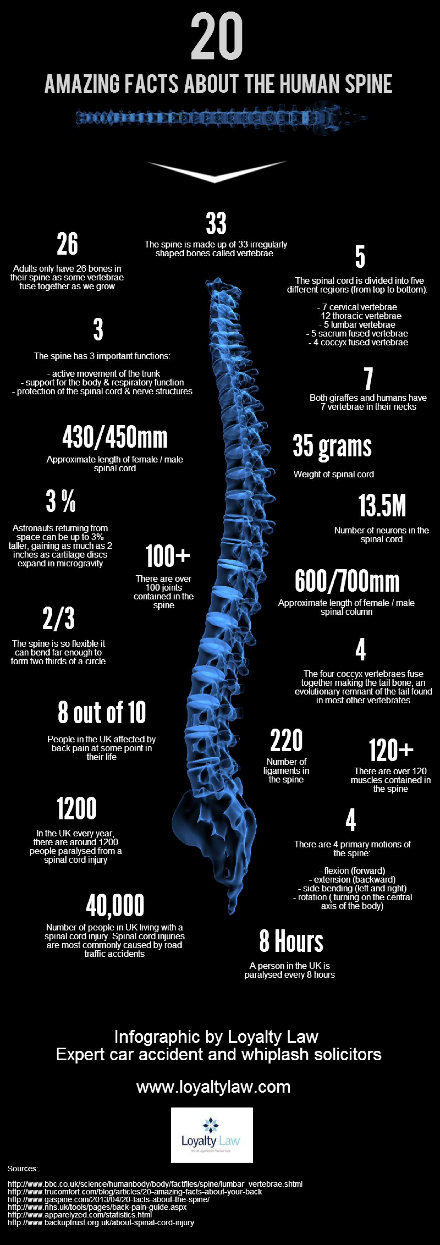 20 Amazing Facts about the Spine | Visual.ly