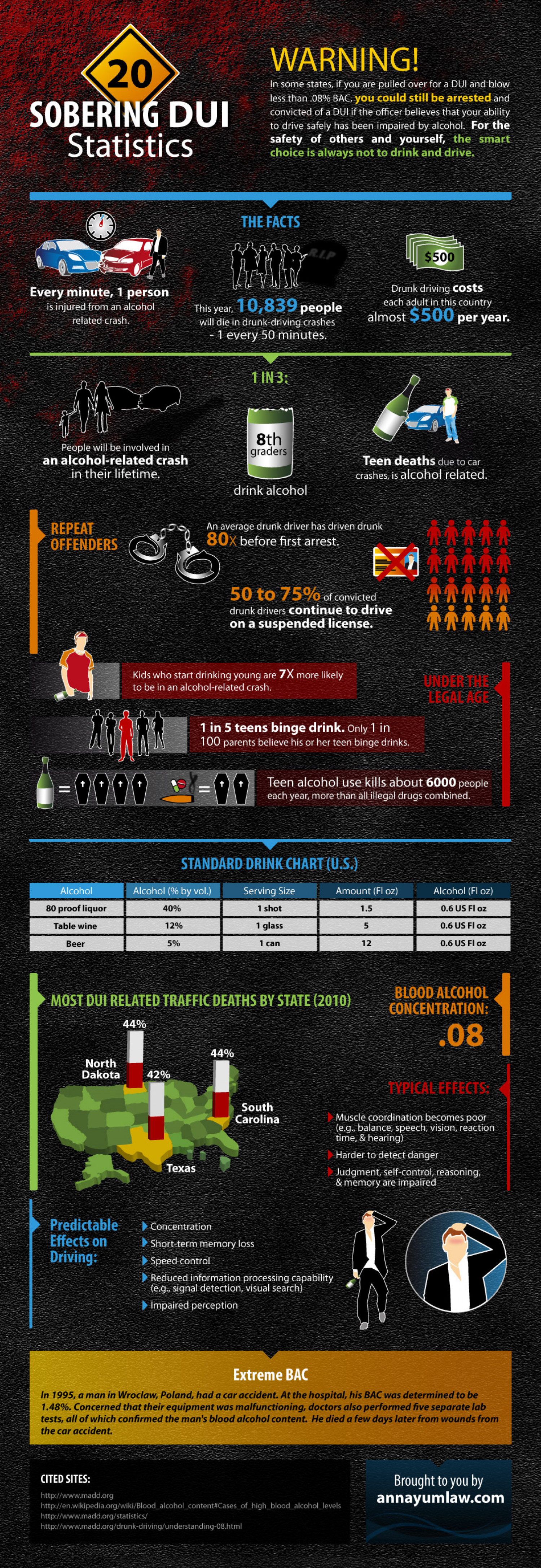 20 Sobering DUI Statistics Infographic