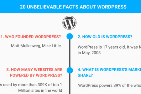 20 Unbelievable Facts about WordPress Infographic