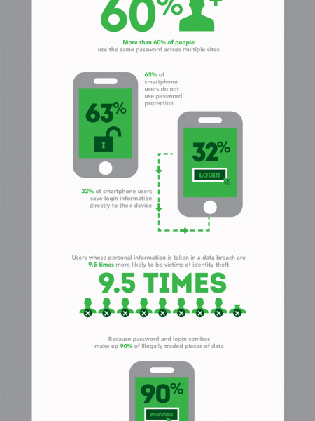 2012: The Year of Password Theft  Infographic