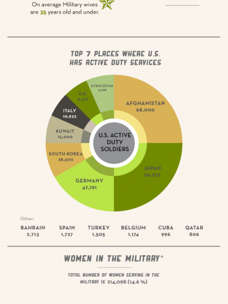 2013 State of The American Soldier Infographic