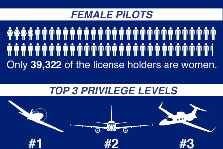 2014 FAA Pilot License Holders Infographic
