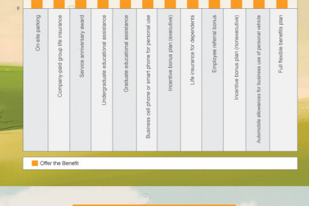 2014 Overview of Employee Benefits in the US Infographic