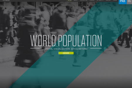 2014 World Population Digital Visualization  Infographic