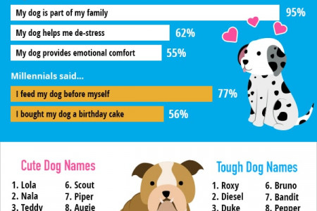 2018 Top Dog Names Infographic Infographic