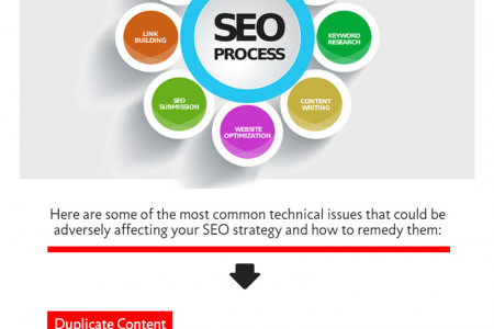 3 Key Reasons Why Your SEO is Not Working and How to Remedy Them Infographic