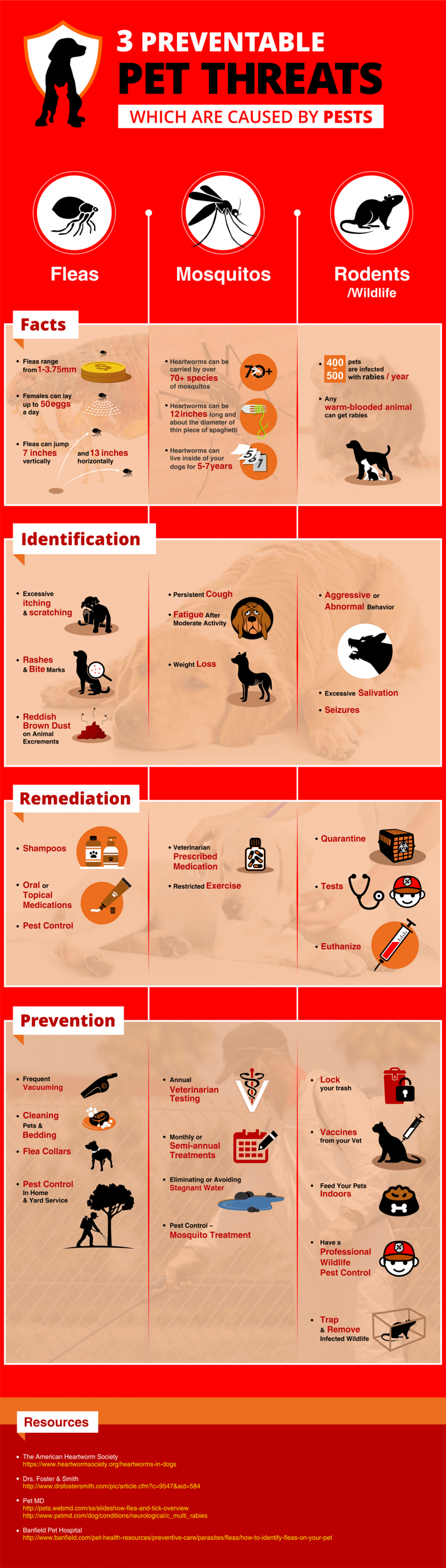 3 Preventable Pet Threats Which are Caused by Pests Infographic