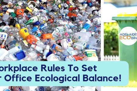 3 Workplace Rules To Set Your Office Ecological Balance! Infographic