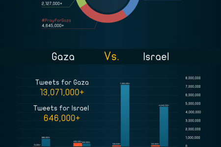 30 Days of the Israeli aggression on besieged Gaza Infographic