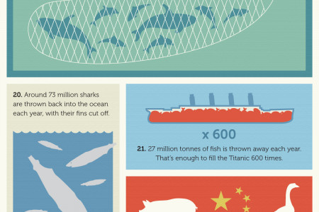 35 Fish Facts that Will Make You Never Want to Eat Fish Again Infographic