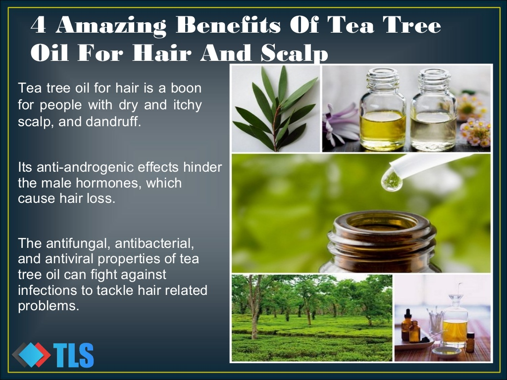 Amazing Benefits of Using Tea Tree Oil foto