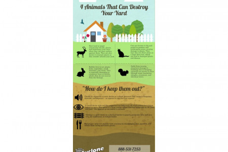 4 Animals That Can Destroy Your Yard Infographic