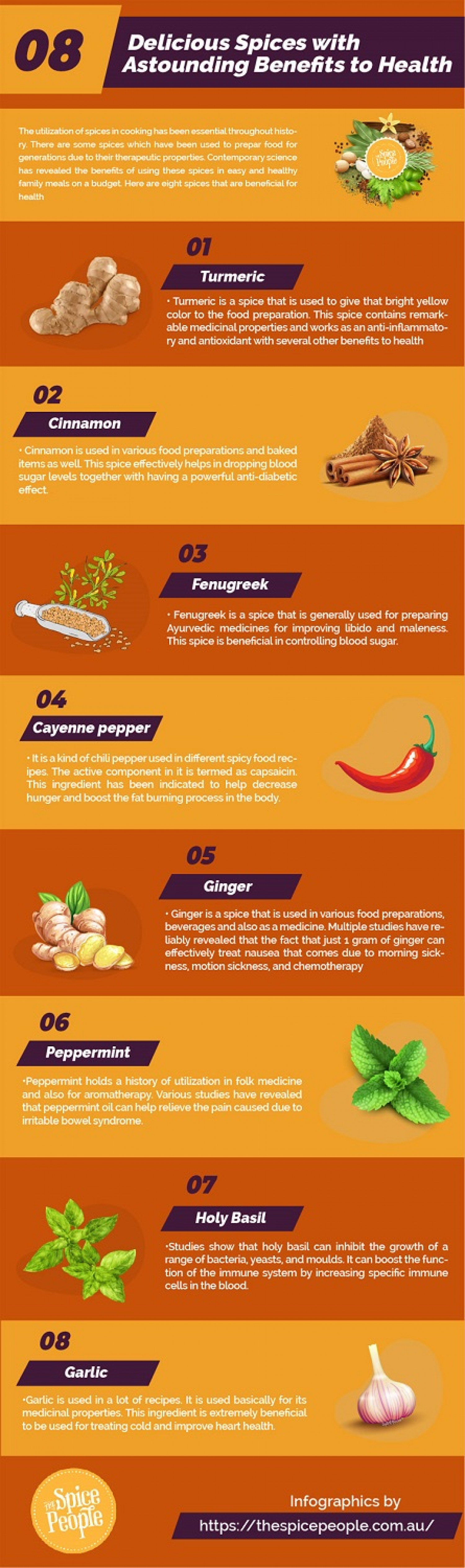 4 Major Spices With Significant Health Benefits Infographic