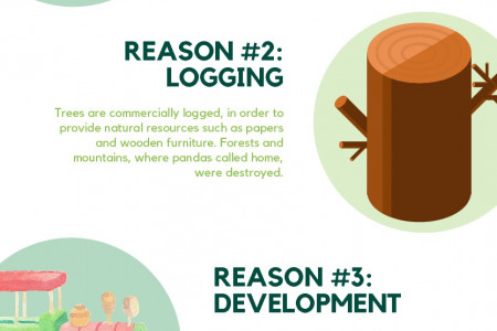 4 Reasons Why Pandas Are Endangered Infographic