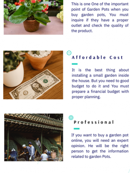 4 Things To be Understood Well Before Buying Garden Pots Online Infographic