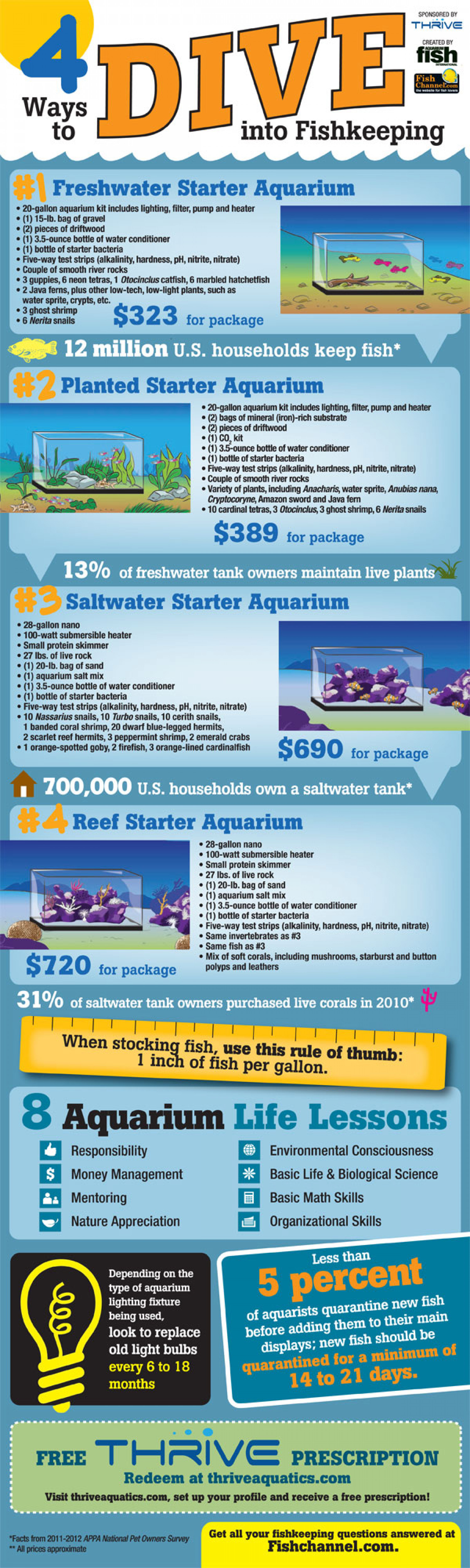 4 Ways to Dive Into Fishkeeping Infographic