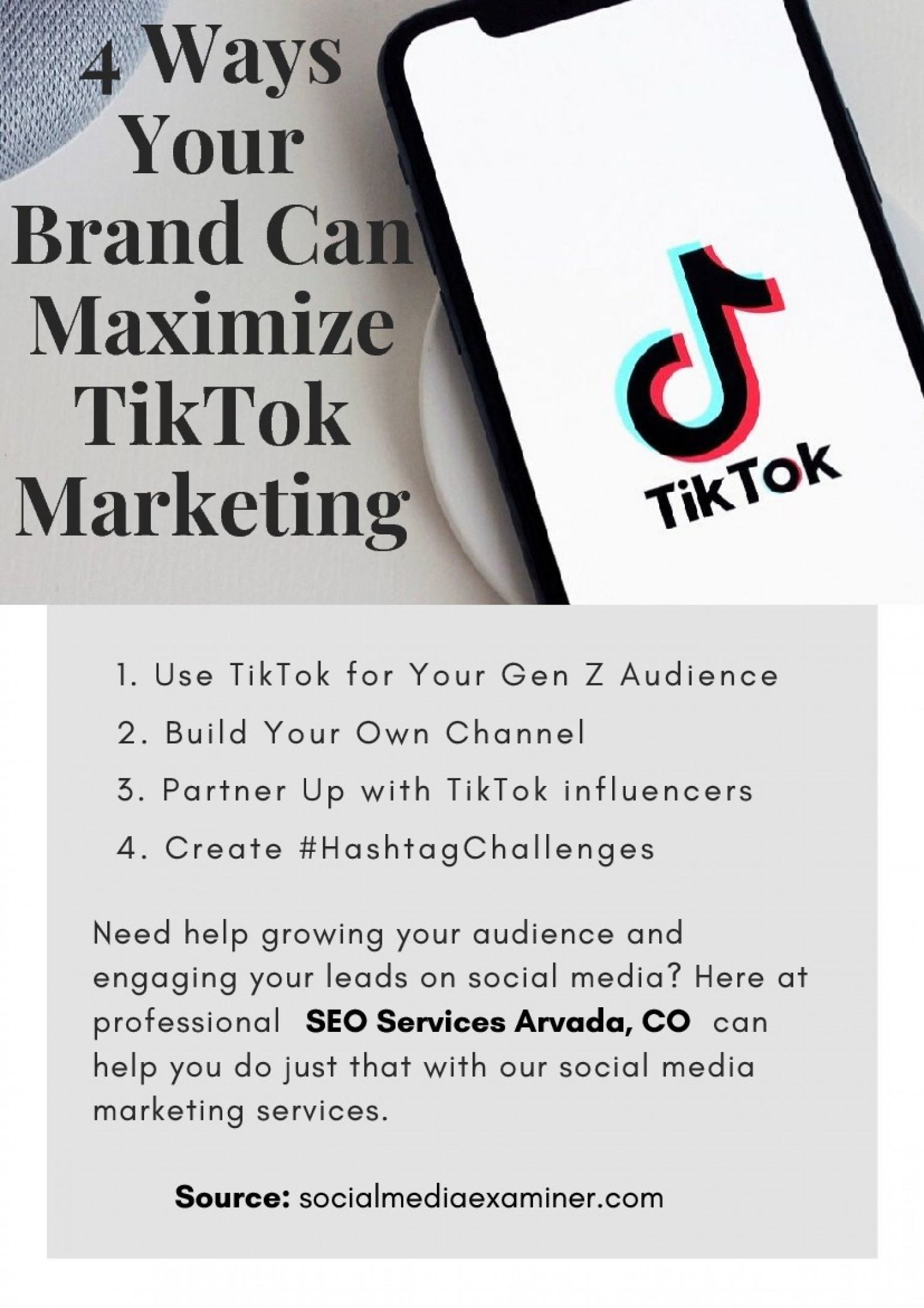 4 Ways Your Brand Can Maximize TikTok Marketing Infographic