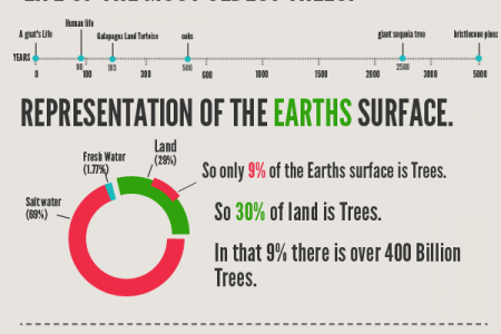 400 Billion Trees Infographic