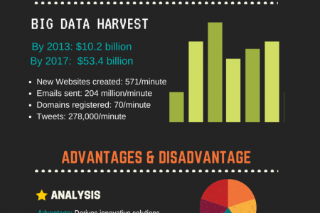 5 Advantages and Disadvantages of Big Data Infographic