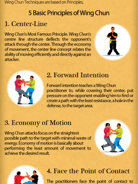 5 Basic Principles of Wing Chun Infographic